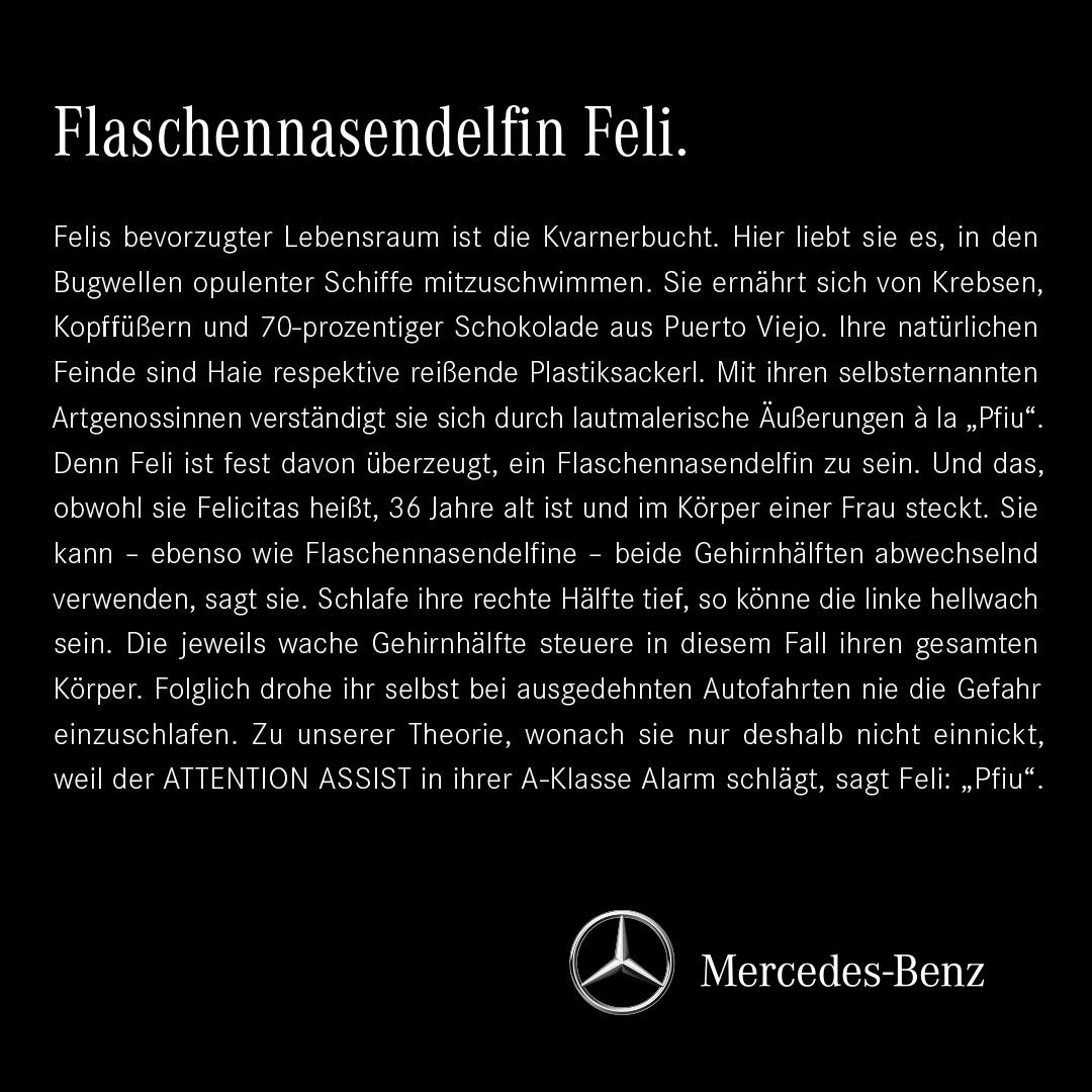 31_Flaschennasendelfin_Feli_ET 02.08.indd